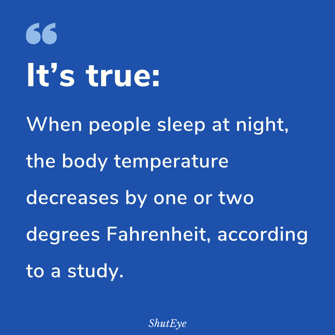35 Interesting Sleep Facts That You Didn't Know!