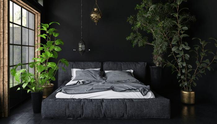 ShutEye circadian rhythm disorder causes treatment symptoms Get a good sleeping environment